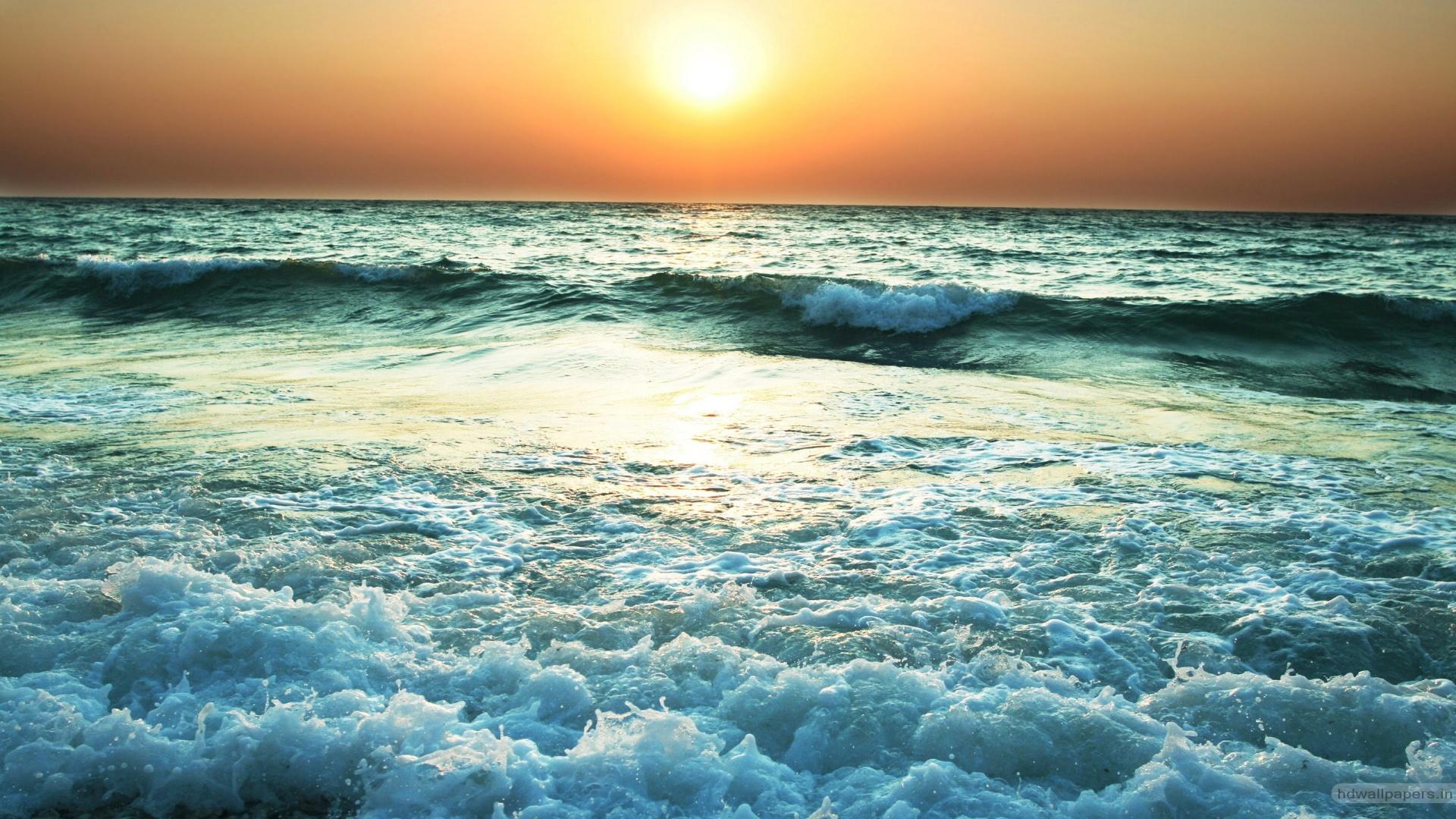 Ocean la apus