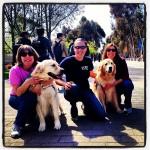 Câinii: simple animale de companie sau barometre emoționale pe patru picioare?