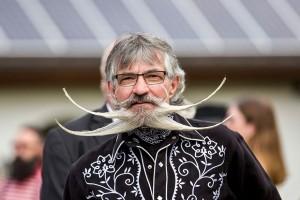 campionat-al-barbii-si-mustatii