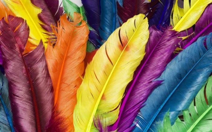 Faptele surprinzătoare despre cum ne influențează viața culorile